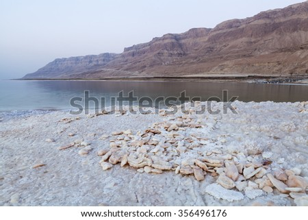 Stones made of salt on the dead sea shore with mountains in the background - stock photo