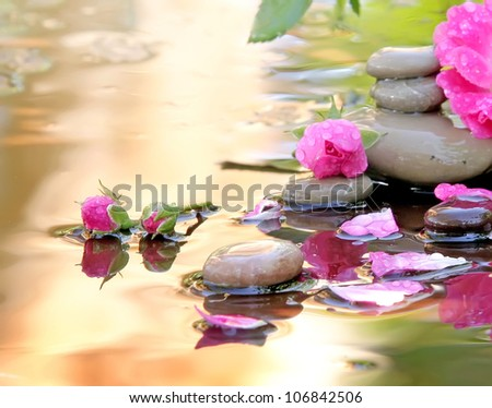Stones of Spa and flowers of a rose lie in water the waters covered with drops - stock photo