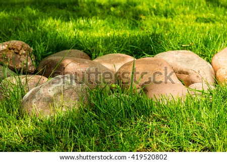 Stones on the green grass - stock photo