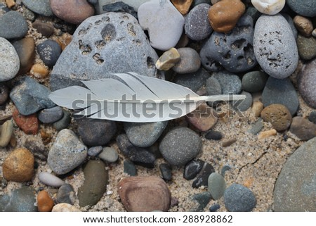 Stones, Rocks, Sand at the beach in Bray and Gryestones, Co.  Wicklow, Ireland
