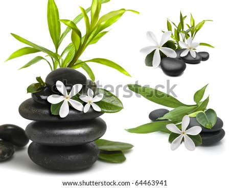 Stones with green bamboo leafs and white flower on white background - stock photo