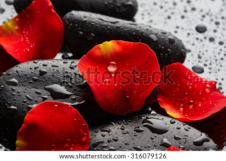 Stones with rose petals and drops of water on black background - stock photo