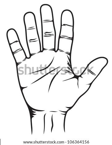 Stop Hand - stock photo