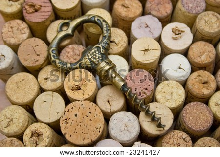 stoppers and old corkscrew - stock photo