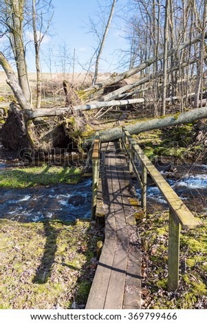 Storm damaged wood by the stream with a path - stock photo