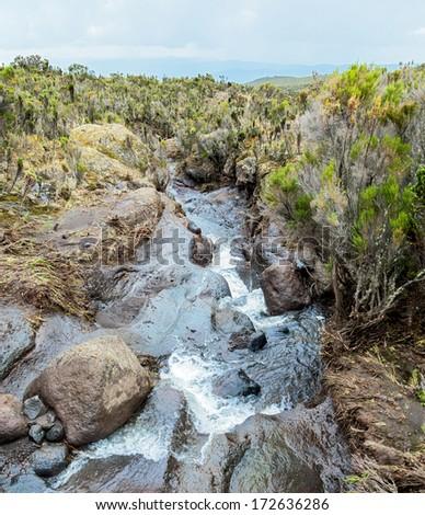 Storm stream on the slopes of Kilimanjaro - Tanzania - stock photo