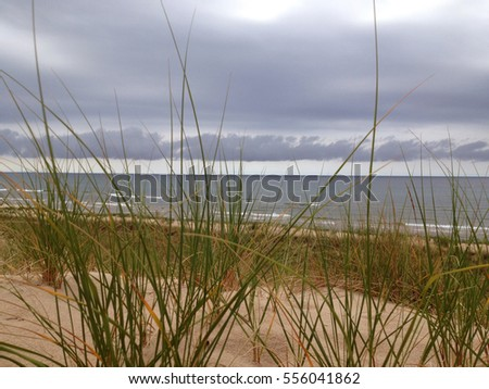 Stormy horizon over sand dune with green grass in foreground