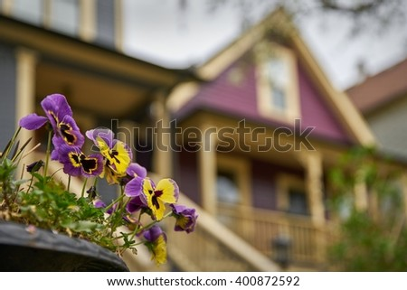 Strathcona Flowers, Vancouver. Colorful flowers in the historical Strathcona neighbourhood of Vancouver. British Columbia, Canada.                                   - stock photo