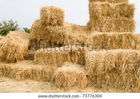 Straw - stock photo