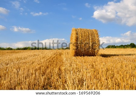 straw bale harvested in field under blue sky with clouds