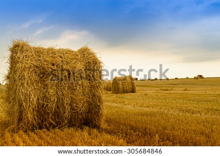Straw bale on the field after harvest. Focus foreground - stock photo