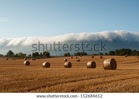 straw bales in a field recently harvested during sunset with blue cloudy sky - stock photo