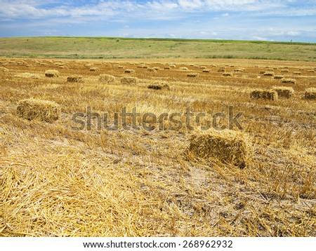 Straw bales in agricultural harvested wheatfield in Europe - stock photo