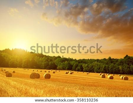 Straw bales on farmland at sunset - stock photo