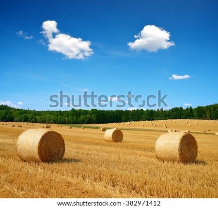 Straw bales on farmland with blue cloudy sky - stock photo