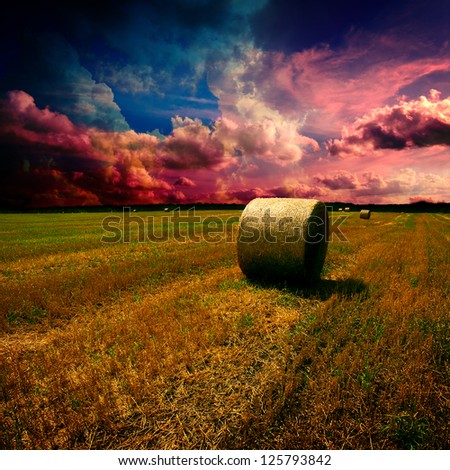 Straw bales on field with blue cloudy sky - stock photo