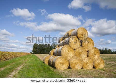 Straw bales rolled up, the crop stubble, landscape with dramatic clouds.  - stock photo