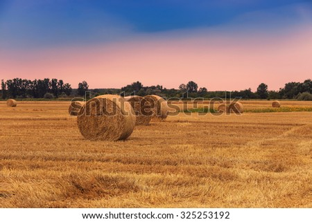 Straw bales with dramatic sky in Hungary
