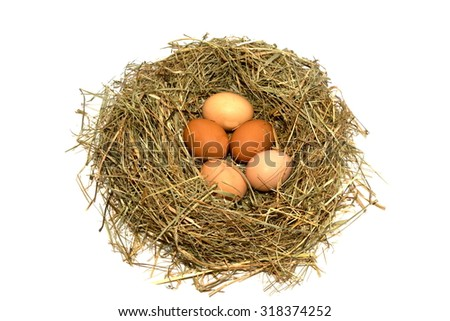 straw bird's nest with eggs inside isolated on white background