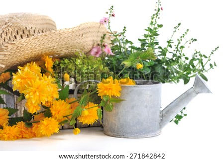 straw hat on plants and flowers with metal watering can on white background