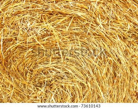 Straw texture background, close up - stock photo