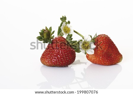 Strawberries and blossom - stock photo