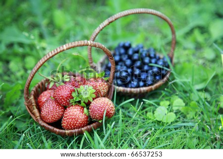 Strawberries and blueberries on the green grass - stock photo