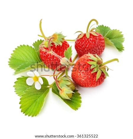 strawberries and green leaves isolated on white background - stock photo