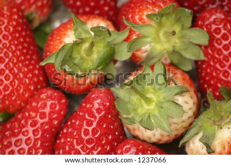 strawberries and green tops - stock photo