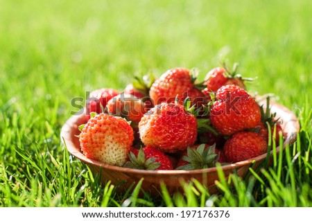 Strawberries in a wooden bowl on a grass