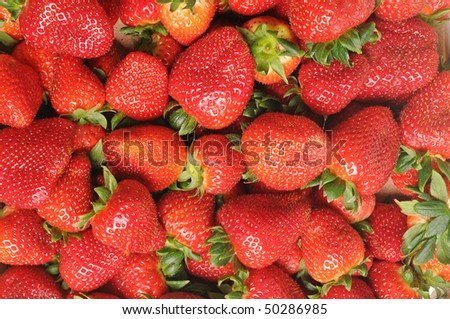 Strawberries in close-up