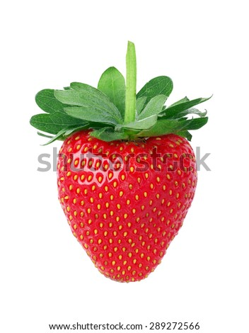 Strawberries isolated on a white background - stock photo