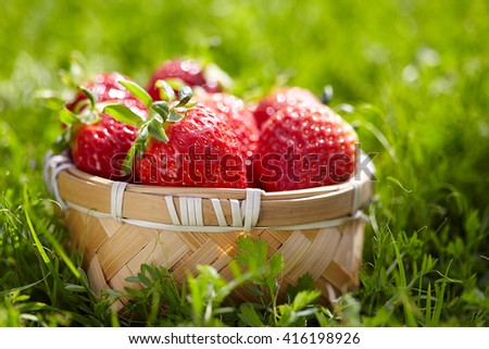 strawberries on the grass