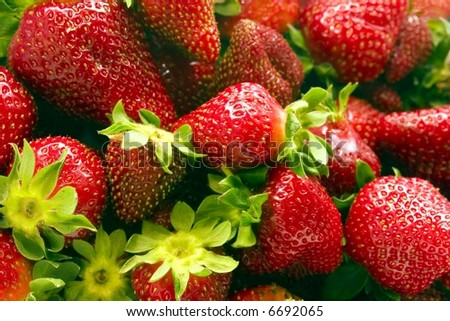 Strawberries vol. 1. Close up of a bunch of strawberries - stock photo
