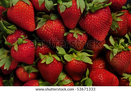 Strawberries with leaves filling the frame