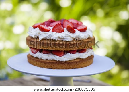 Strawberry and cream cake - stock photo