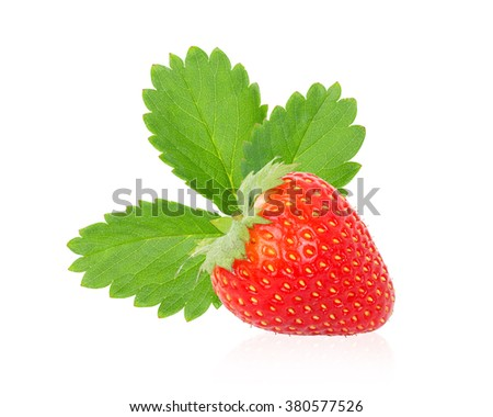 Strawberry fresh leaves  isolated on white background. This has clipping path.    - stock photo