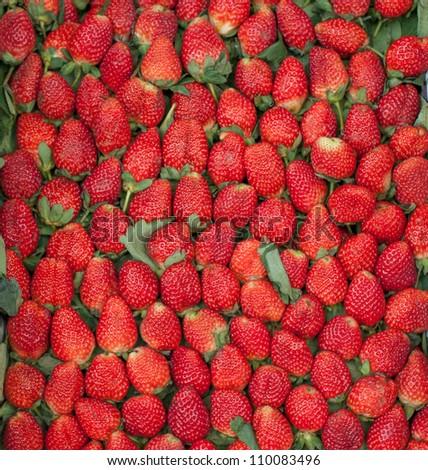 strawberry many - stock photo