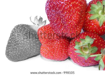 strawberry outcast #2 - stock photo
