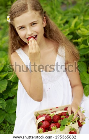 Strawberry season - young girl eating fresh picked strawberries in the garden - stock photo
