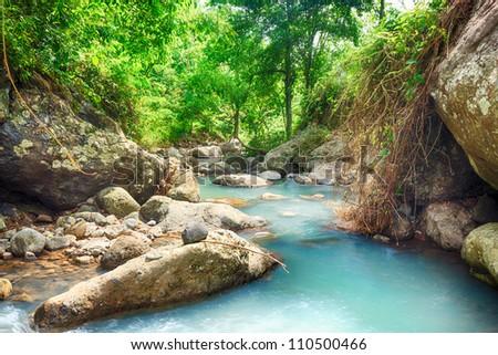 Stream among rainforest.Bali. Indonesia - stock photo