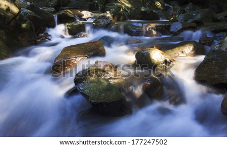 Stream illuminated by sunlight at Sabah, Borneo, Malaysia - stock photo