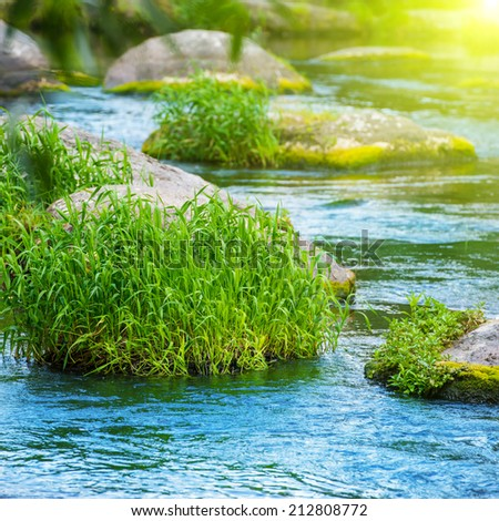 Stream in the tropical forest. Environment sunny landscape with rocks - stock photo