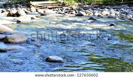 Stream scenery - stock photo