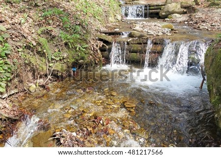 Stream with cold water flowing in the forest.
