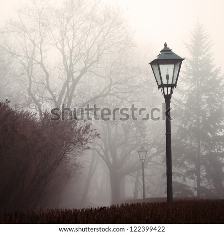 Street lamp and forest park in fog - stock photo