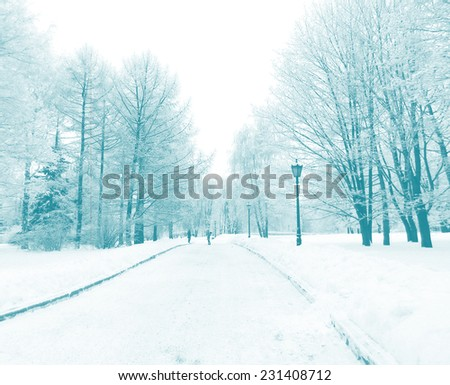 Street light in city park snow alley, blue color filtered. Kolomenskoe, Moscow, Russia. New Year background. - stock photo