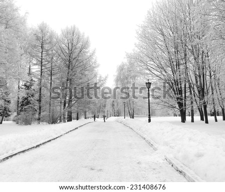 Street light in city park snow alley, Kolomenskoe, Moscow, Russia. Cold winter day. - stock photo