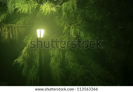 Street light in foggy park - stock photo