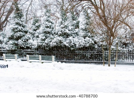 Street view after the storm of a park during the cold winter season snow blizzard - stock photo
